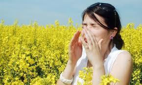 hälsa allergi
